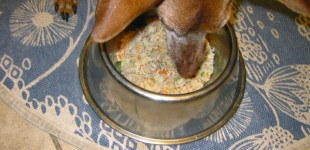 another homemade dog food recipe